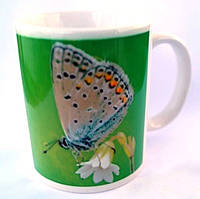 Фото-кружка хорошего настроения  Бабочка оригинальный подарок