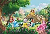 Фотообои на плотной полуглянцевой бумаге для стен 368*254 см из 8 листов: Детские, Принцессы
