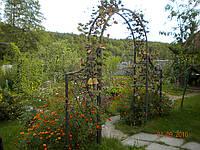 Арка садовая кованая арт.дс 5
