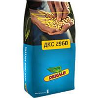 Кукуруза Monsanto DKS 2960 (ФАО 250 Среднеранний)  2016 г.