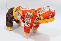 """Дождевик """"Медведи"""" Vip Doggy (мальчик) капюшон размер М-3 (удлиненный размер), фото 1"""