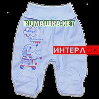Ползунки (штанишки) на широкой резинке р. 62 демисезонные ткань ИНТЕРЛОК 100% хлопок ТМ Алекс 3165 Голубой