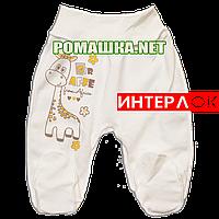 Ползунки (штанишки) на широкой резинке р. 62 демисезонные ткань ИНТЕРЛОК 100% хлопок ТМ Алекс 3165 Бежевый