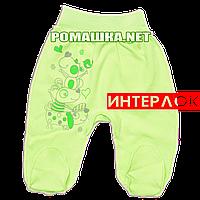 Ползунки (штанишки) на широкой резинке р. 56 демисезонные ткань ИНТЕРЛОК 100% хлопок ТМ Алекс 3165 Зеленый