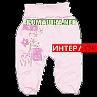 Ползунки (штанишки) на широкой резинке р. 56 демисезонные ткань ИНТЕРЛОК 100% хлопок ТМ Алекс 3165 Розовый2