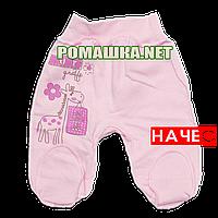Ползунки (штаны) на широкой резинке с начесом р. 62 ткань ФУТЕР 100% хлопок ТМ Алекс 3180 Розовый