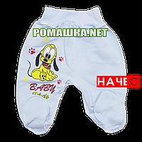 Ползунки (штаны) на широкой резинке с начесом р. 56 ткань ФУТЕР 100% хлопок ТМ Алекс 3180 Голубой