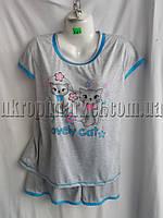 "Женская пижама (норма) ""Alians"" ZR-235"
