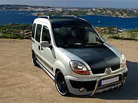 Защитные дуги на Renault Kangoo, фото 1