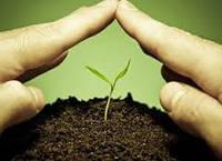 Защита растений от болезней и вредителей , фото 1