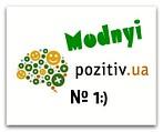 """Интернет -магазин """" Модный  Позитив"""""""