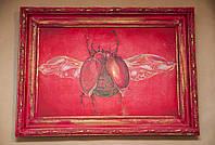 Красны жук