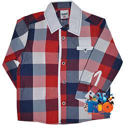 """Детская рубашка с длинным рукавом """"Waxmen Original"""" , для мальчиков (рост 80-86-92-98 см)"""