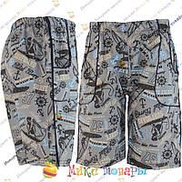 Летние шорты для мальчика пр- во Турция от 3 до 7 лет (vn3402-2)