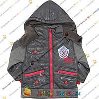 Куртки с капюшоном для мальчика от 2 до 6 лет Турция (3691-2)