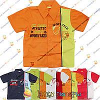 Детские рубашки с коротким рукавом от 1 до 3 лет Турция (4193-1)