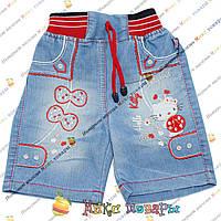 Джинсовые шорты с кошечкой для девочек от 1 до 5 лет (4196)