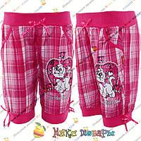 Детские шорты на резинке с кошечкой для девочек от 2 до 7 лет (4255-4)