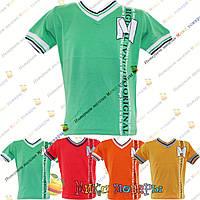 Стильные Турецкие футболки для пацанов от 2 до 8 лет (4287-1)
