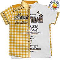 Рубашка с коротким+ футболка Двойка для мальчика Размеры:134-146-152 см (4334-4)