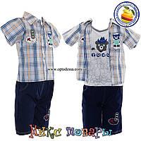 Костюм тройка с котоновыми шортами и майкой для мальчика от 3 до 6 лет (4360)