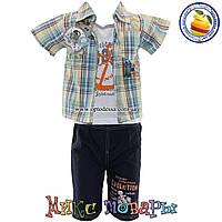 Летний костюм с шортами рубашкой и майкой для мальчика от 3 до 6 лет (4393)