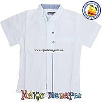 Белая рубашка с коротким рукавом для мальчика от 4 до 8 лет Турция (4490)