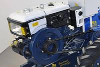 Двигатель Добрыня R195E (12,6 л.с.) (стартер)