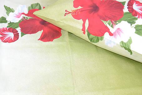 Двуспальное постельное белье (AN201/281), фото 2