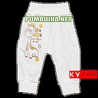 Штанишки на широкой резинке р. 80-86 ткань КУЛИР 100% тонкий хлопок ТМ Алекс 3178 Бежевый