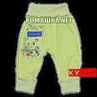 Штанишки на широкой резинке р. 74 ткань КУЛИР 100% тонкий хлопок ТМ Алекс 3178 Зеленый