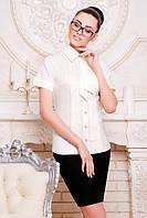 Классическая молочная блузка - рубашка с короткими рукавами Юлиана 42-50 размеры