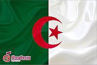 Флаг Алжира 80*120 см.,флажная сетка.,2-х сторонняя печать