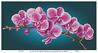 """Схема для вышивания бисером """"Ветка орхидеи"""" 511"""