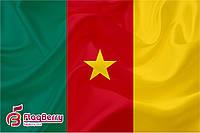 Флаг Камеруна 80*120 см.,флажная сетка.,2-х сторонняя печать