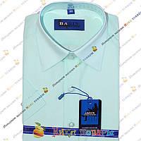 Однотонные подростковые рубашки короткий рукав (Ворот: 28- 36) (vr60-8)