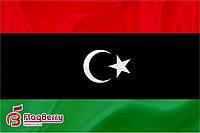 Флаг Ливии 80*120 см.,флажная сетка.,2-х сторонняя печать