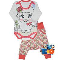 """Трикотажный набор (бодик-штанишки) """"Dolli"""" , для девочки (рост 68-74-80 см)"""