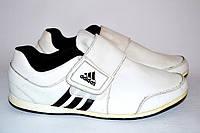 Кроссовки Adidas  OK-8008, фото 1