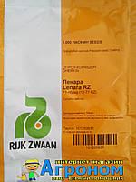 Семена огурца Ленара F1 1000 семян Rijk Zwaan (Рийк Цваан), Голландия