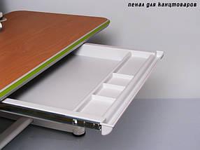 Детская парта растишка стол трансформер Mealux Platon BD-205 WB maple, фото 2
