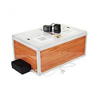 Инкубатор Курочка Ряба 60 яиц: авто переворот яиц, поддержание температуры, погрешность 0,1°C, 3 кг