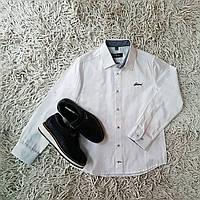 Школьные рубашки Brioni
