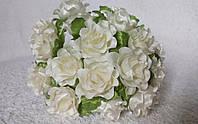 Роза кучерявая кремовая