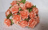 Роза кучерявая персиковая