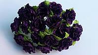 Роза кучерявая фиолетовая