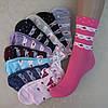 """Качественные женские носки """"Шугуан"""", 36-41 р-р .  Женские носочки из коттона."""