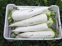 Семена редиса Ярола F1  100 грамм Semo