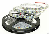 Cветодиодная лента smd5050 (ip33) 60 диодов 2 слоя