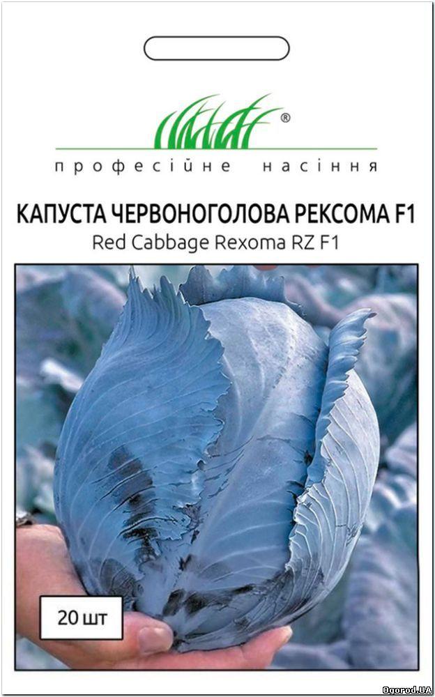 Краснокачанная капуста Рексома F1 семена позднего высокоурожайного гибрида для длительного хранения